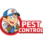Common Services of a Pest Control Company